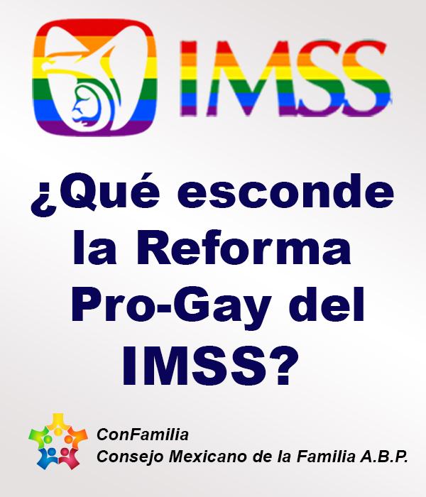 ¿Qué esconde la reforma Pro Gay del IMSS?