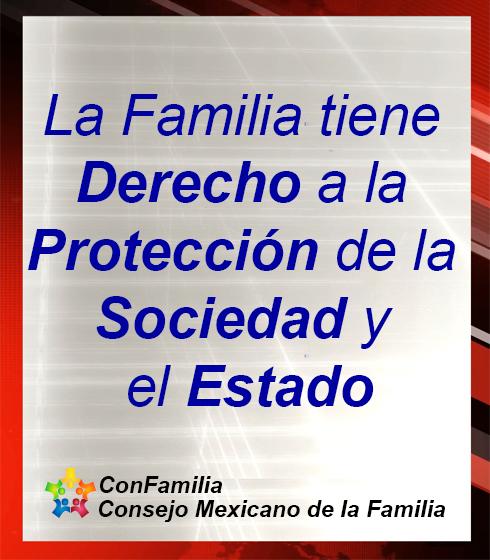 Una Iniciativa para Reformar la Constitución a Favor de la Familia